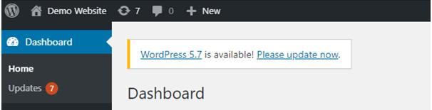 wordpress update option